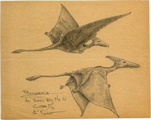 Two pterosaurs in Cuba, sketched by Eskin Kuhn, an eyewitness